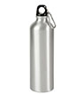 BLK-ICO-279 - 25 Oz. Aluminum Alpine Bottle
